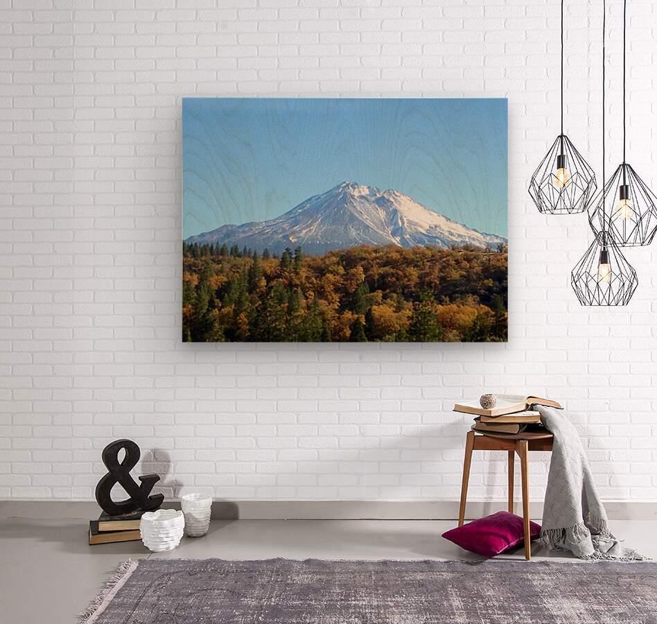 Mt Shasta in Autumn  Wood print