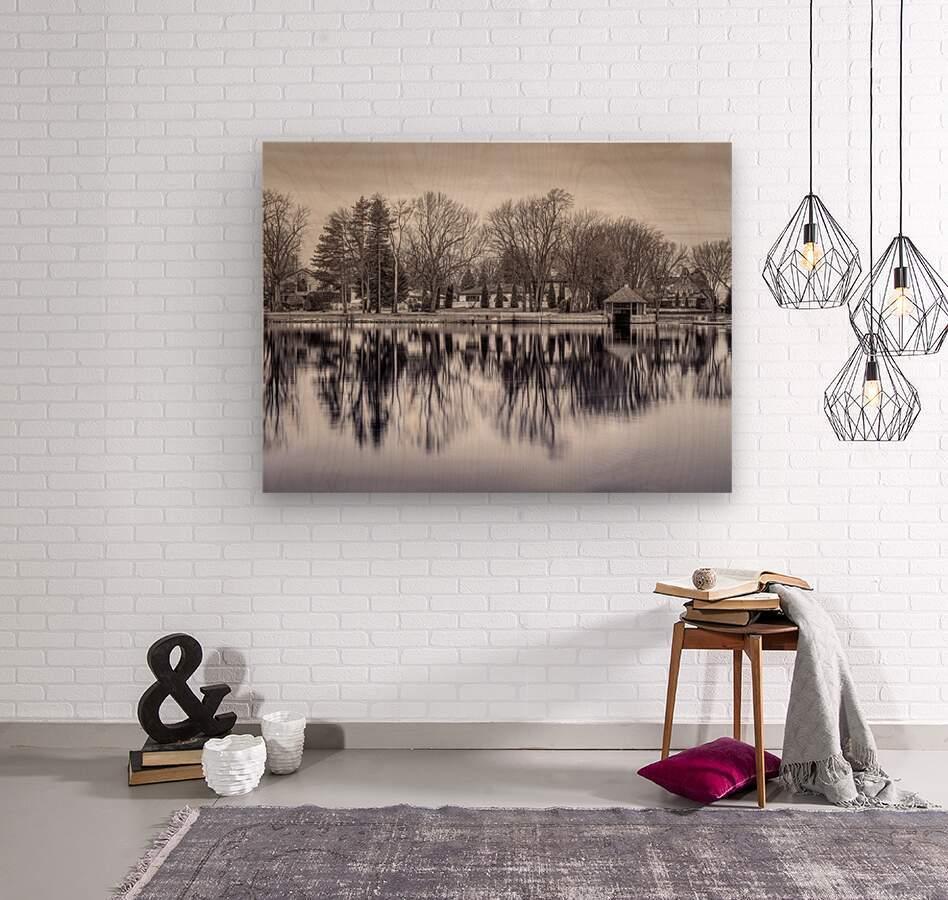 ile Roussin  Wood print