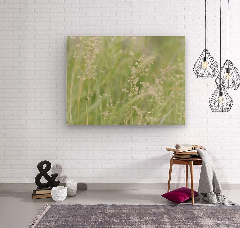 Herbe haute  Wood print
