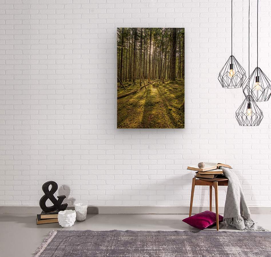 Mossy Forest Morning  Wood print