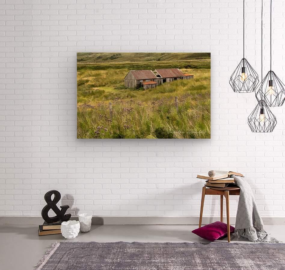 Scottish Highlands Barn  Wood print
