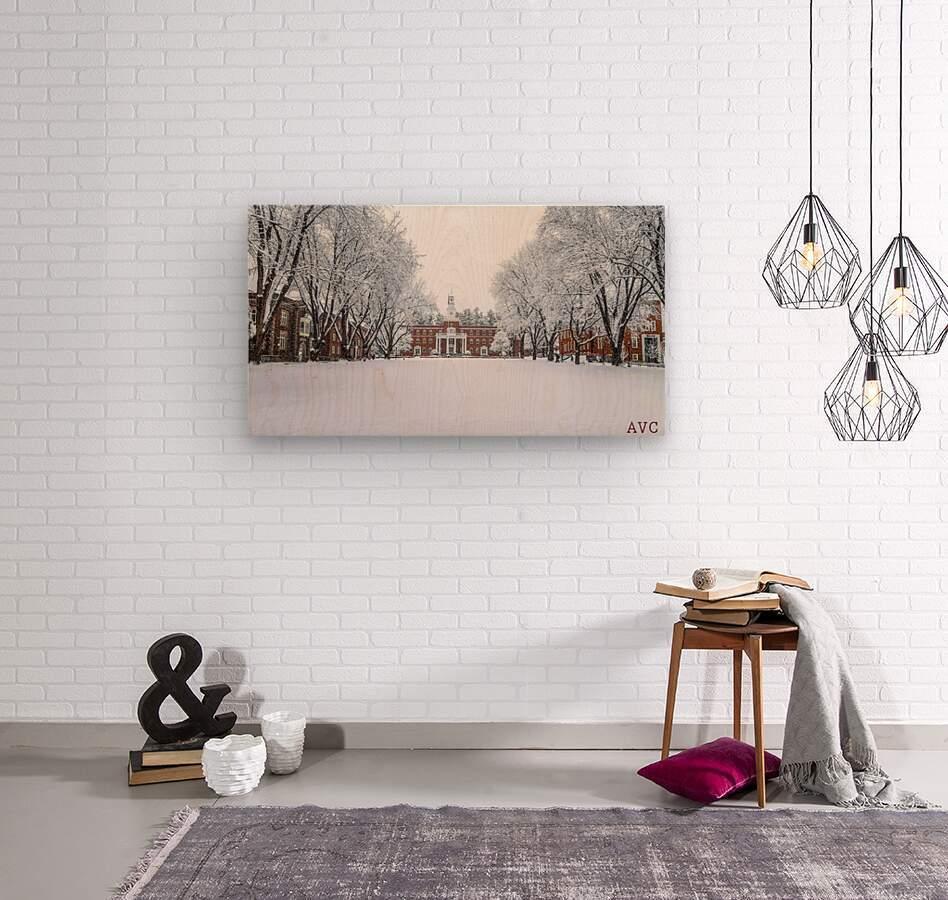 Upper Parade Ground- Winter  Wood print