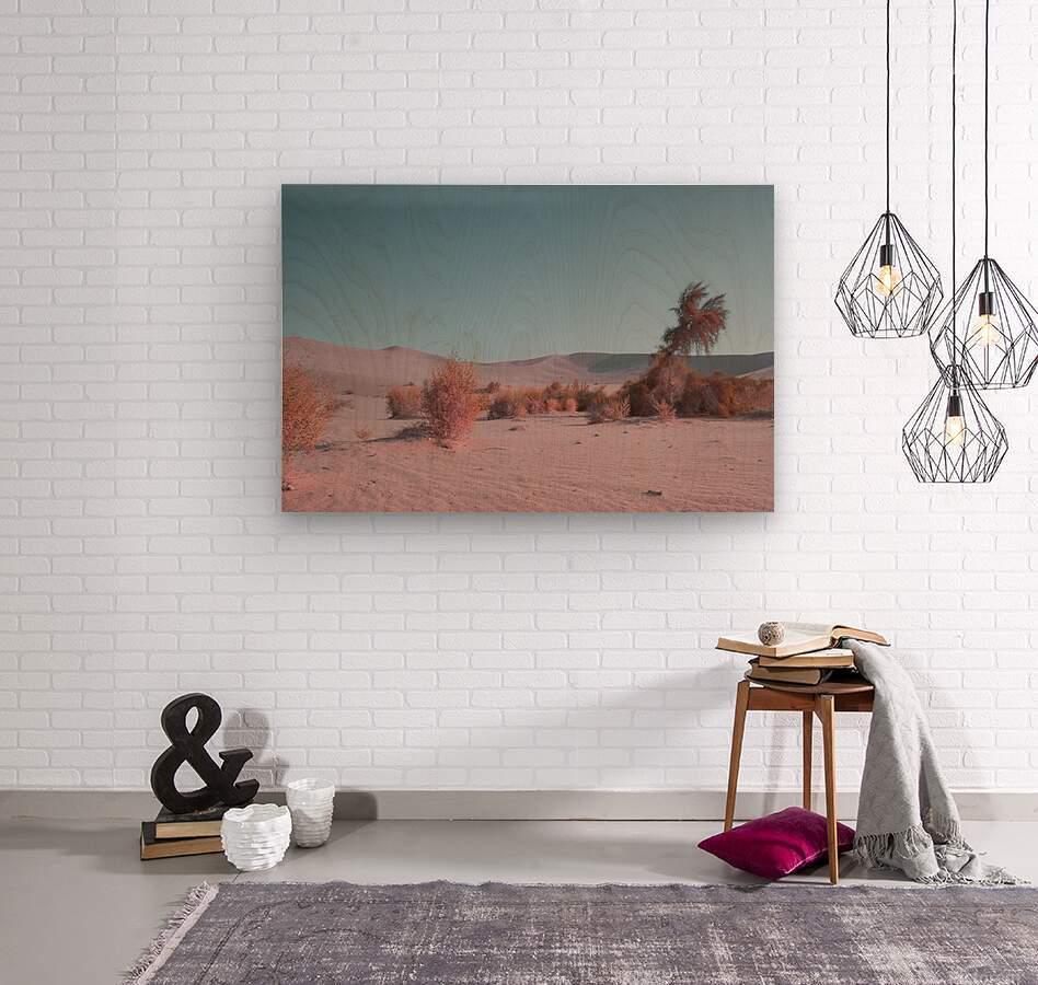 Misty Desert  Wood print