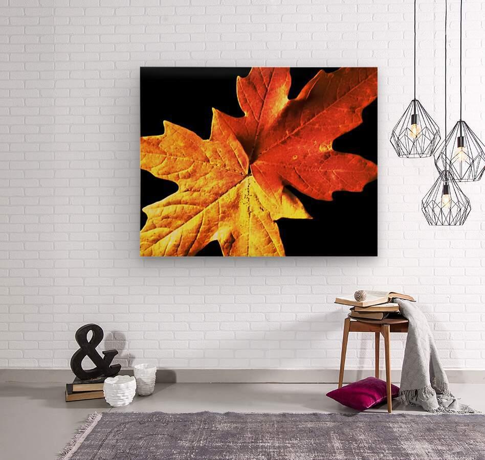 Fall Maple Leaves 3  Wood print