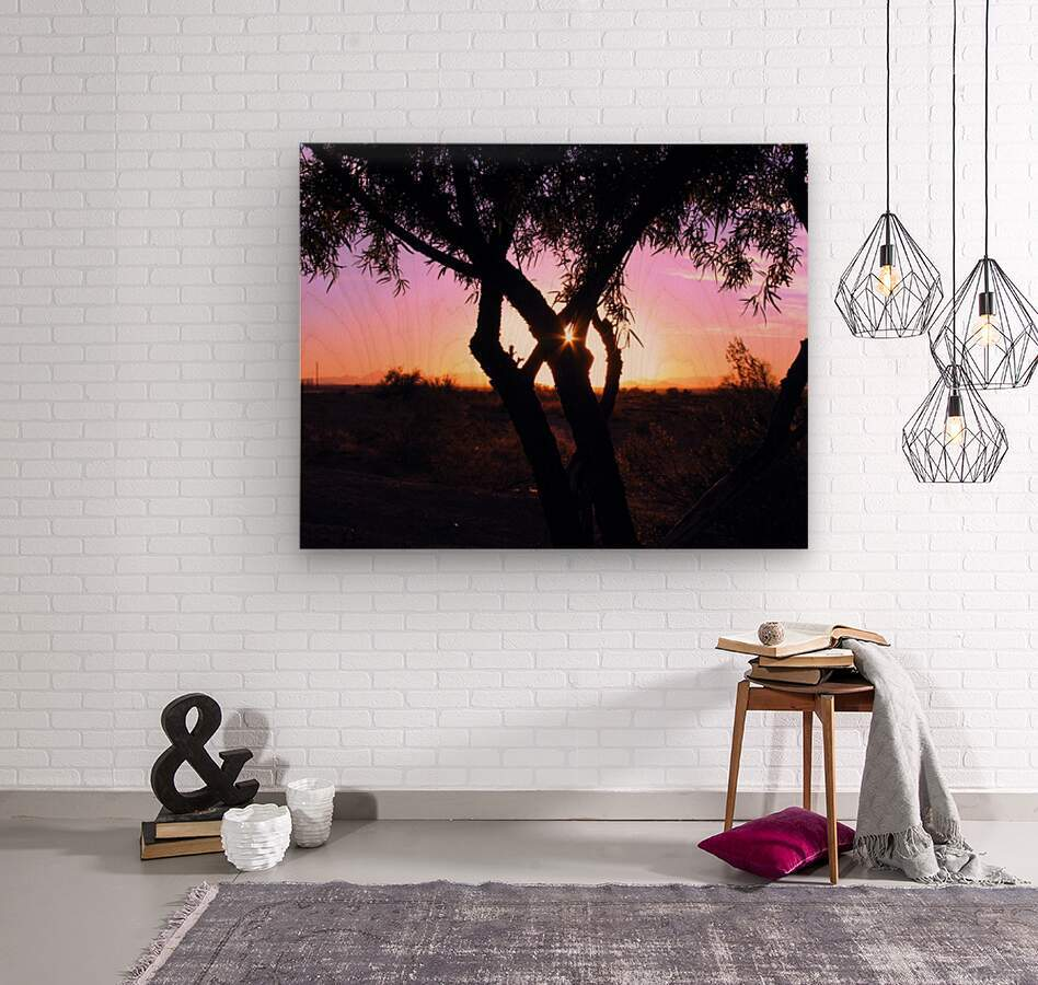 Tamarisk Sunset  Wood print