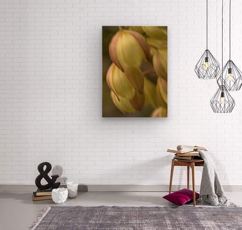 Beauty in a Gentle Breeze  Wood print