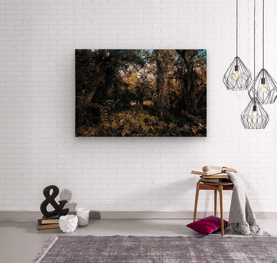 Monet style 1  Wood print