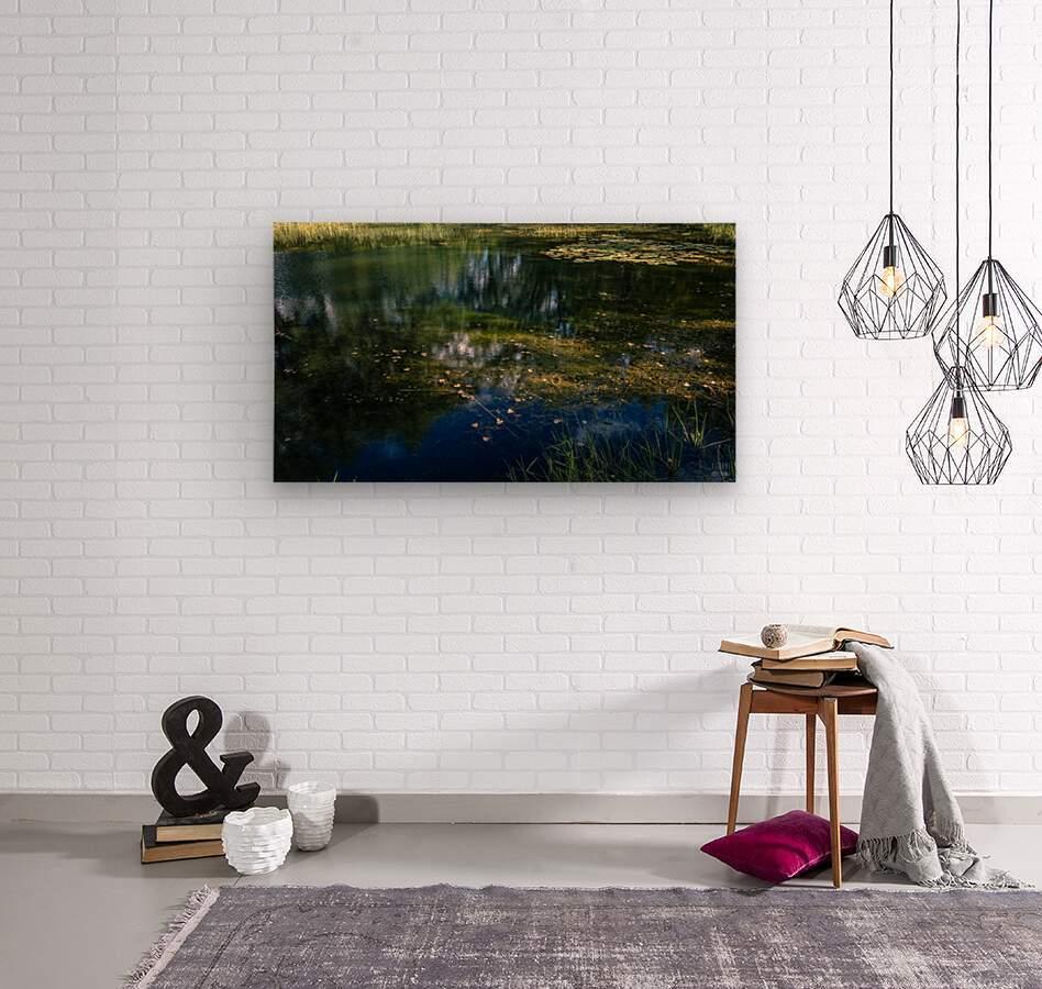 Monet style 3  Wood print