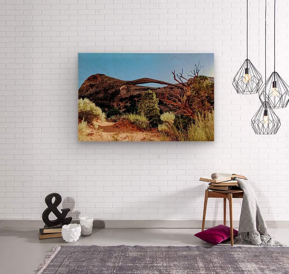 Landscape Arch I  Wood print
