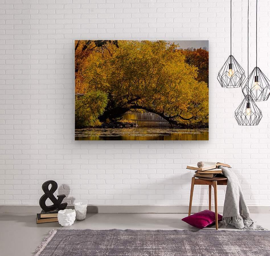 Arc de Treeomph  Wood print