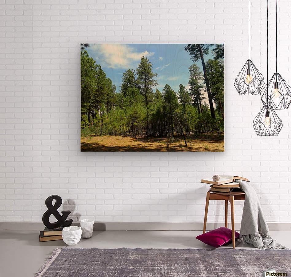Deep In  Impression sur bois