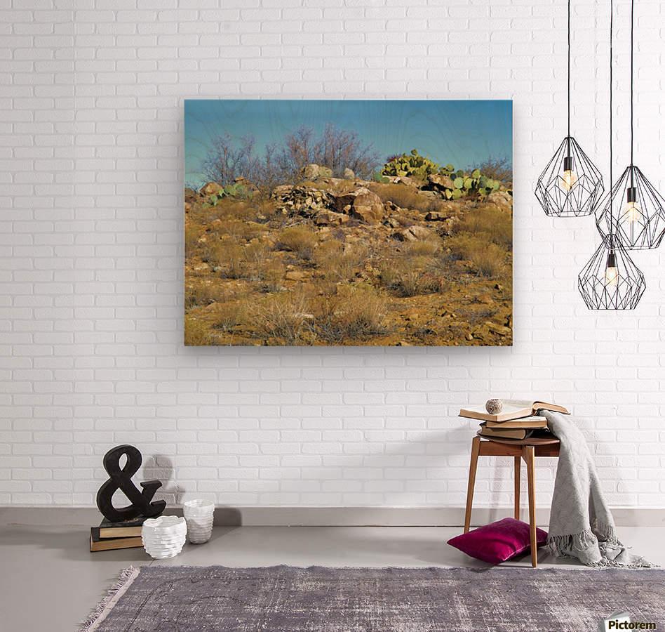 Rock n Cactus  Wood print