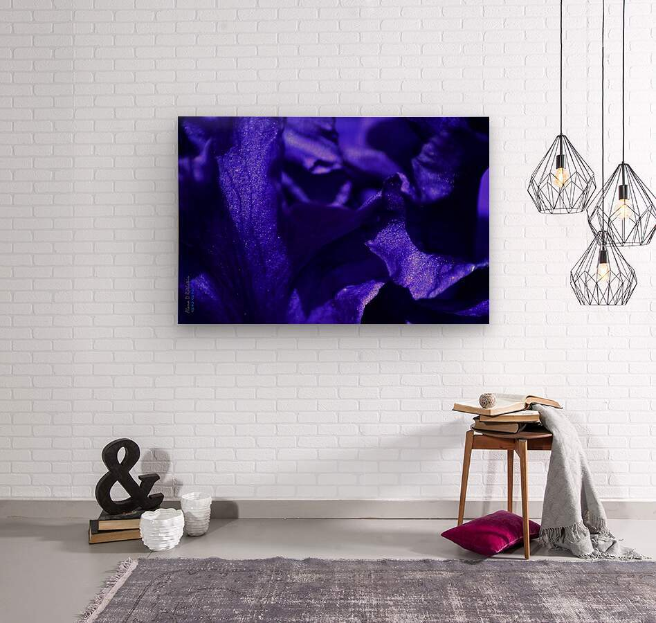Purple Iris 1  Wood print