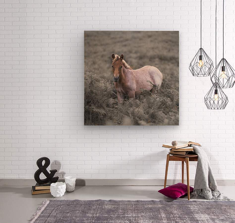 Wild Horses, New Forest  Wood print