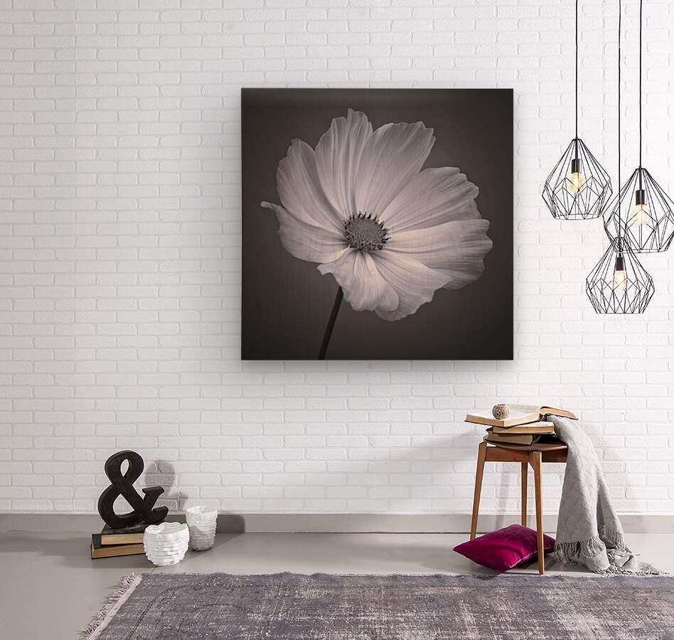 Cosmos flower  Wood print