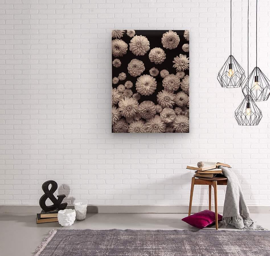 Dahlia Flowers, Full Frame  Wood print