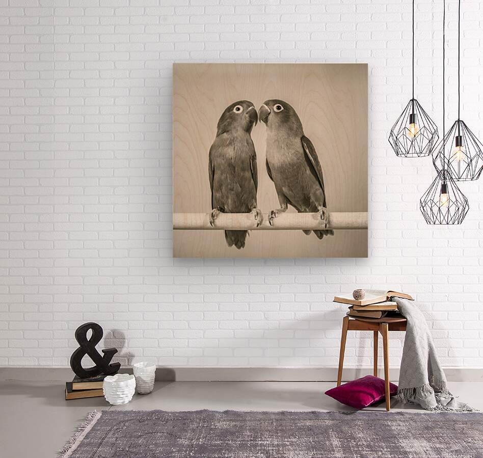 Two love birds kissing  Wood print