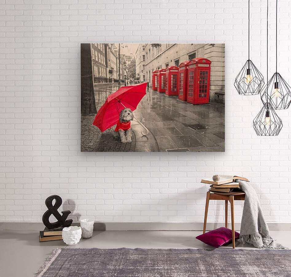 Dog with umbrella on London city street  Wood print