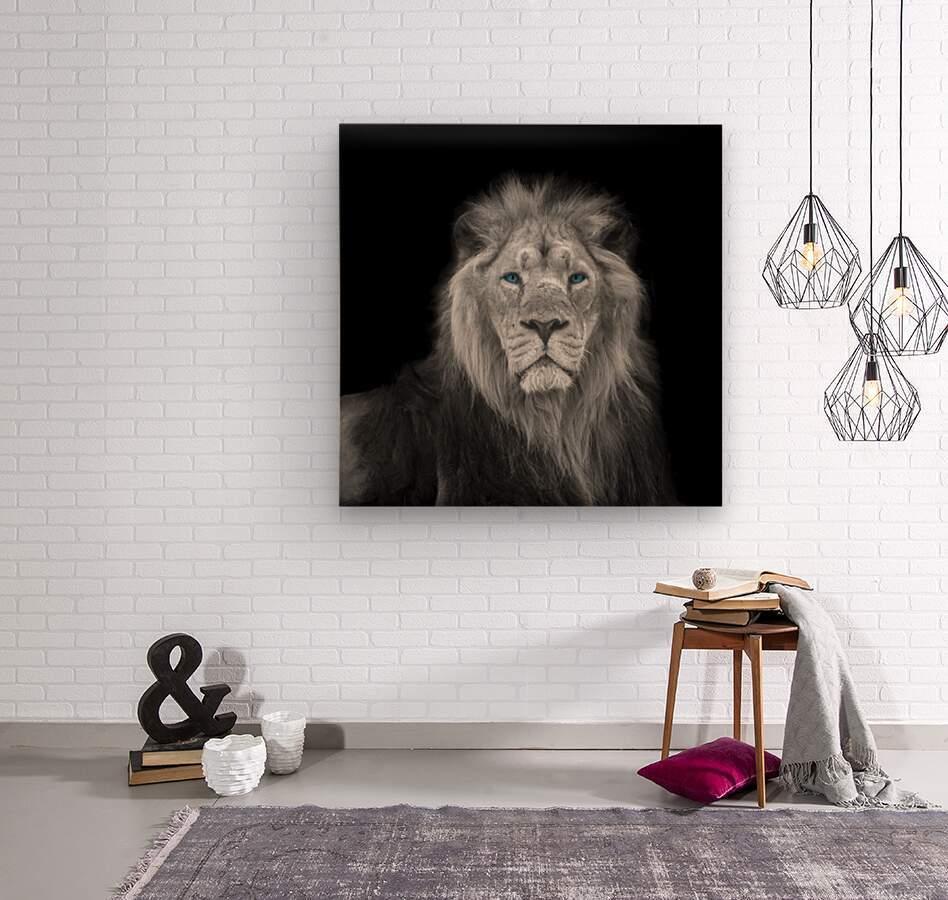 Lion face  Wood print