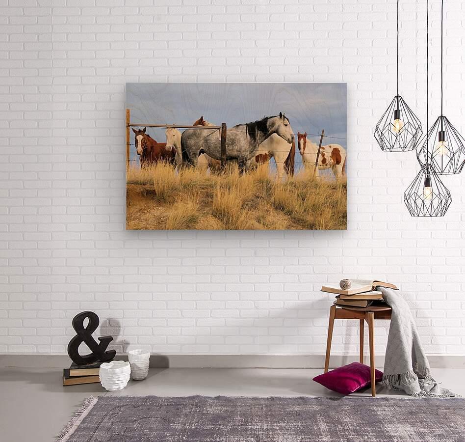 Little Bighorn Ponies  Wood print