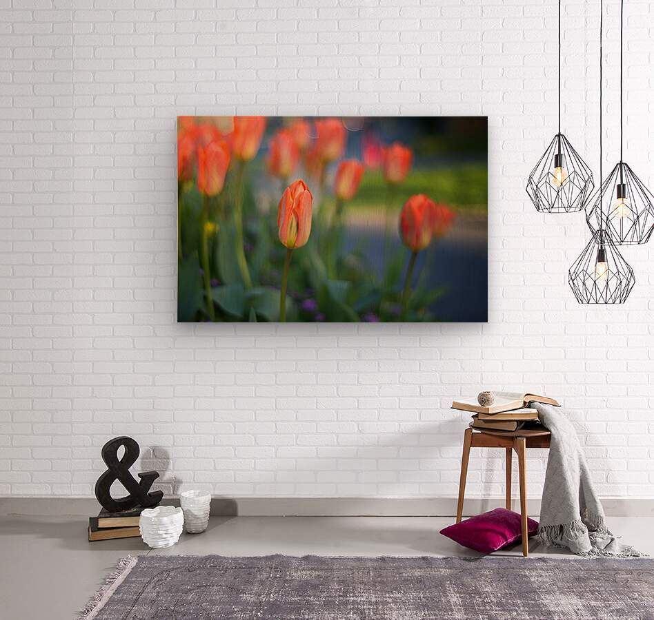 Tulips For You  Wood print