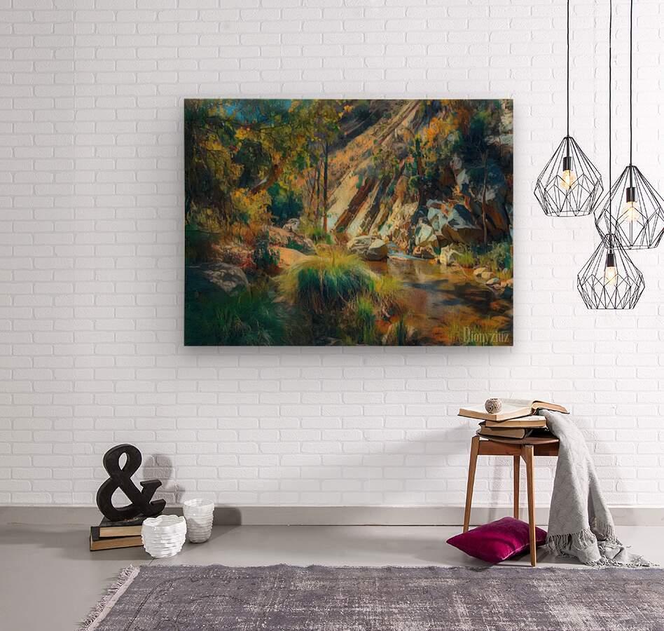 Ojai canyons  Wood print