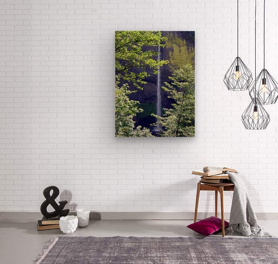 Secret Falls  Wood print