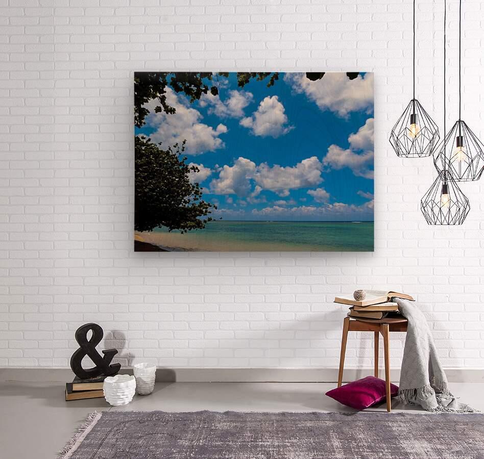 Turquoise Waters & Blue Skies  Wood print