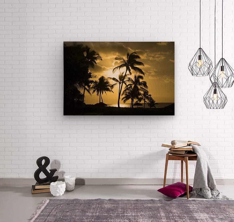 Paradise Dreams  Wood print