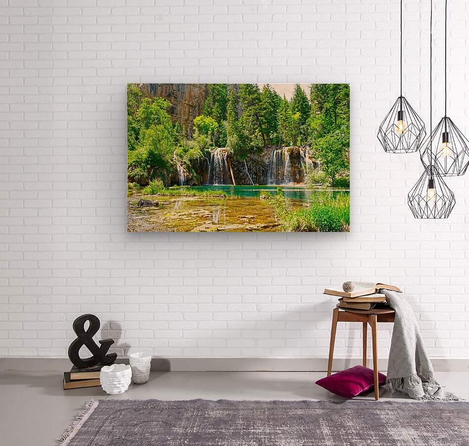 Beautiful Colorado  Wood print