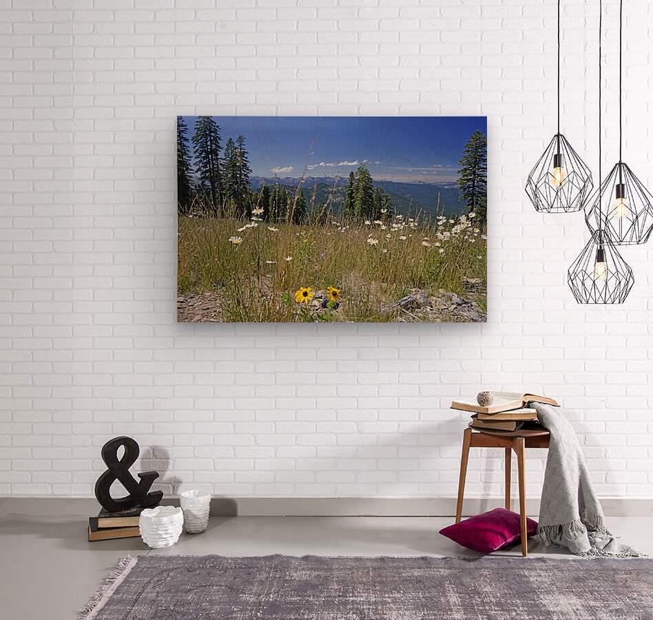 Sierra Nevada in Spring 5 of 8  Wood print