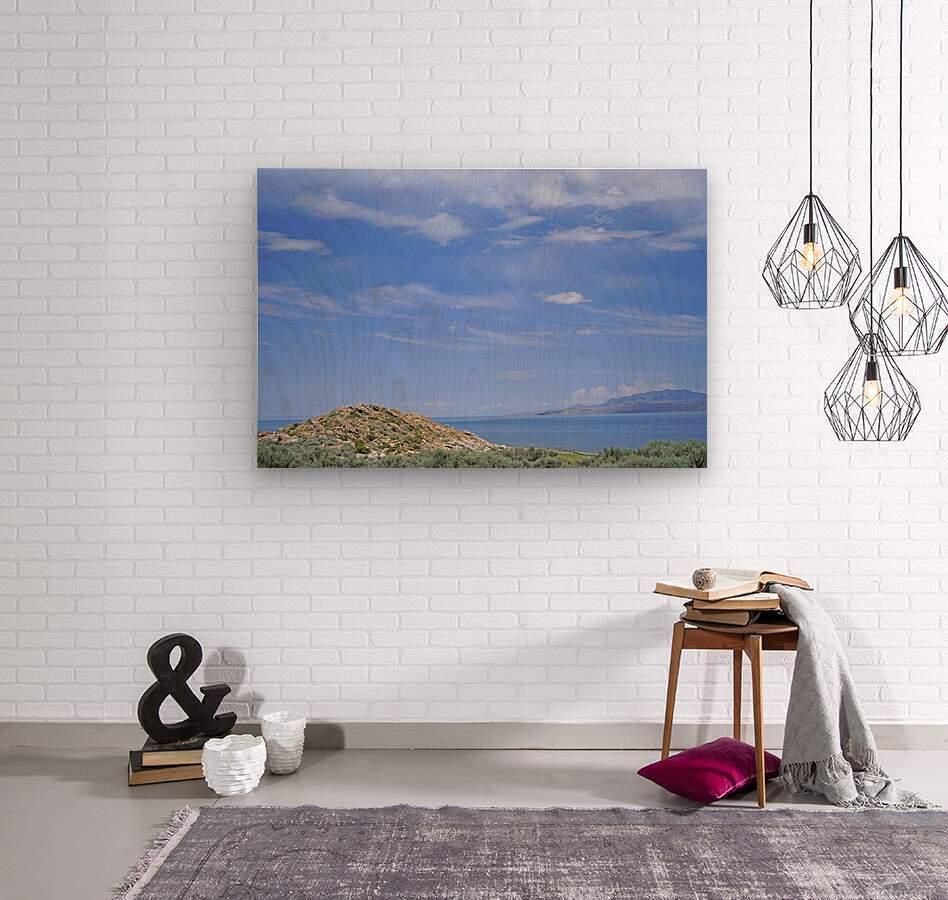 The Great Salt Lake 2 of 7  Wood print