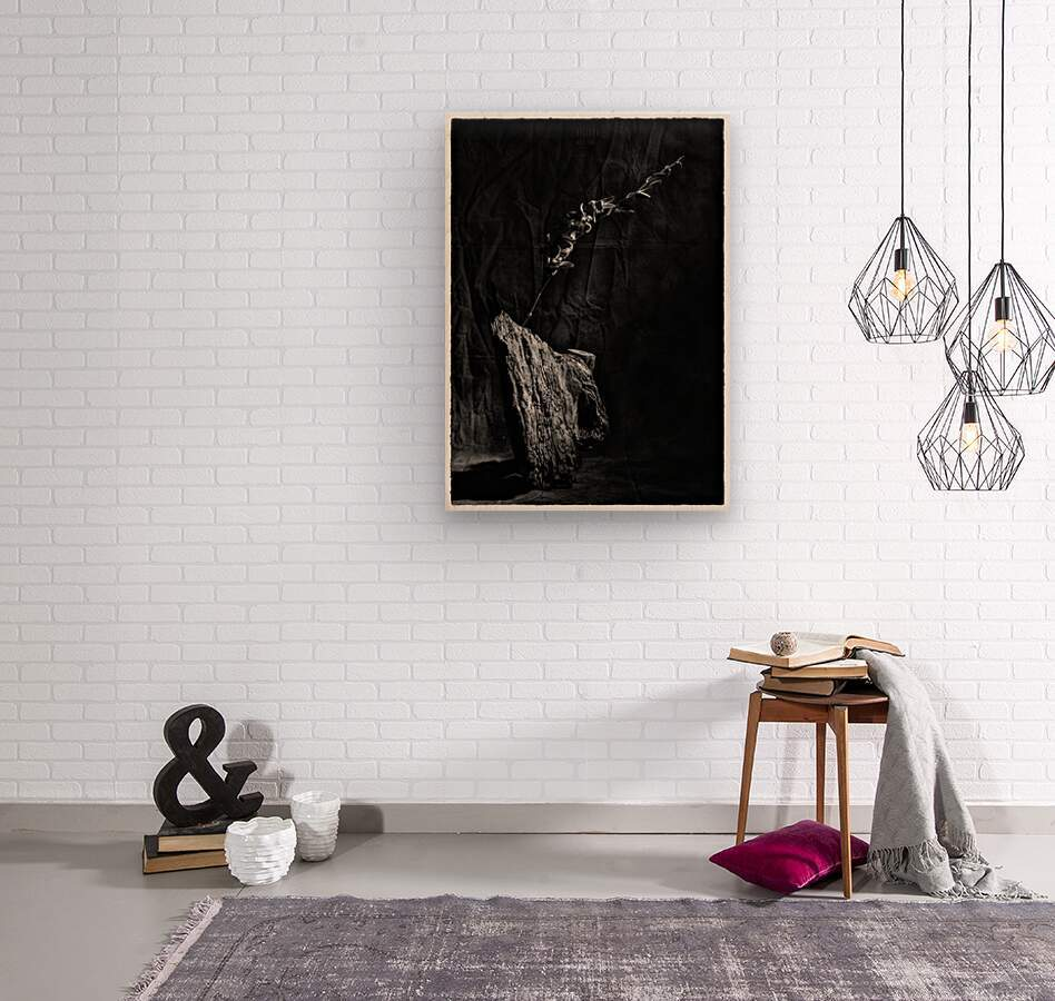 Black and white blues  Wood print