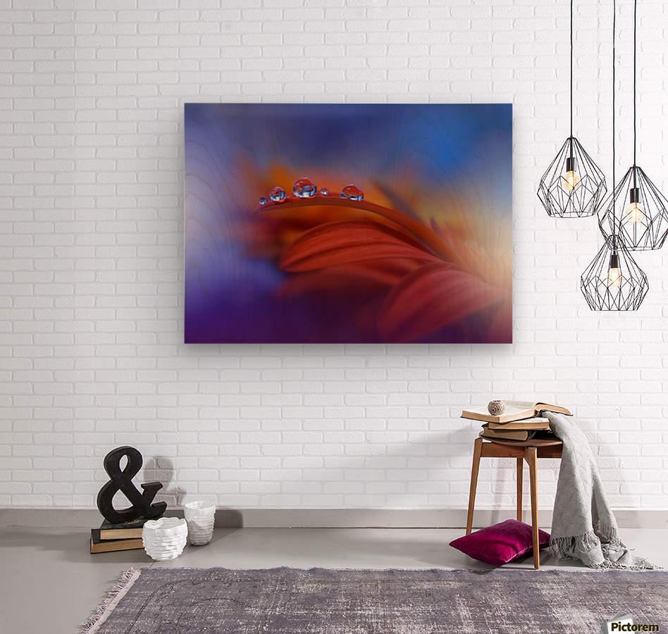 Metamorphosis by Juliana Nan   Wood print