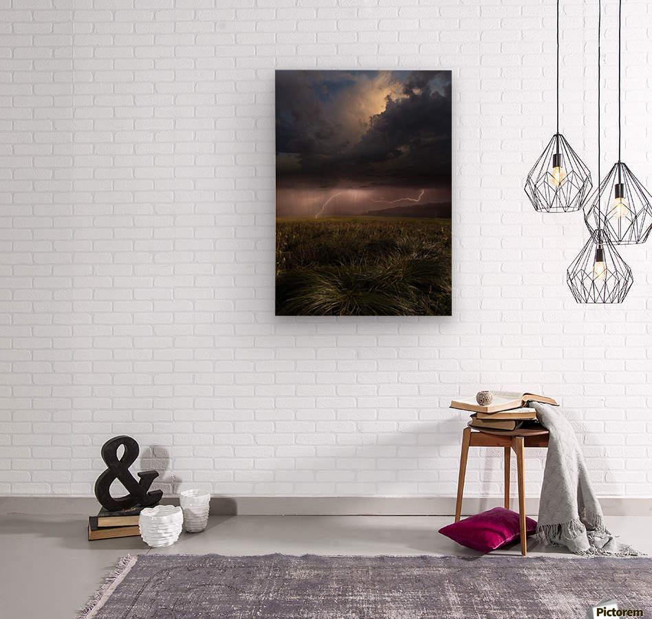 Summer Lights by Franz Schumacher   Wood print