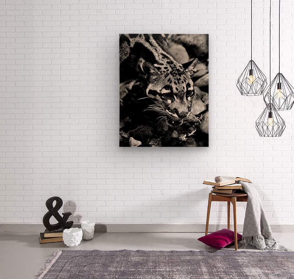 SPOTTED CAT  Wood print
