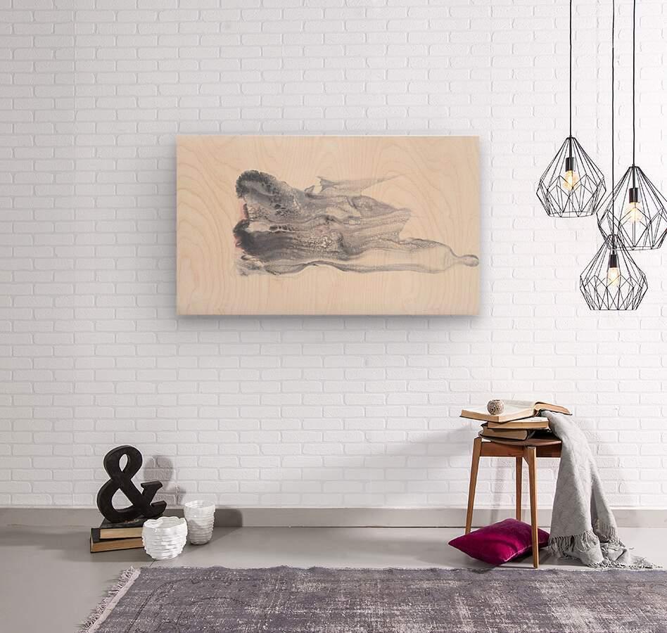 She Effervesces  Wood print