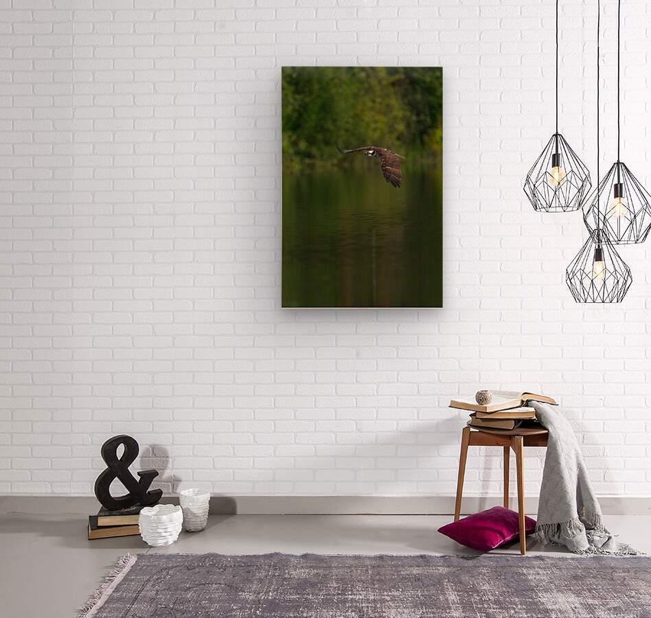 Wesley Allen Shaw 00476  Wood print
