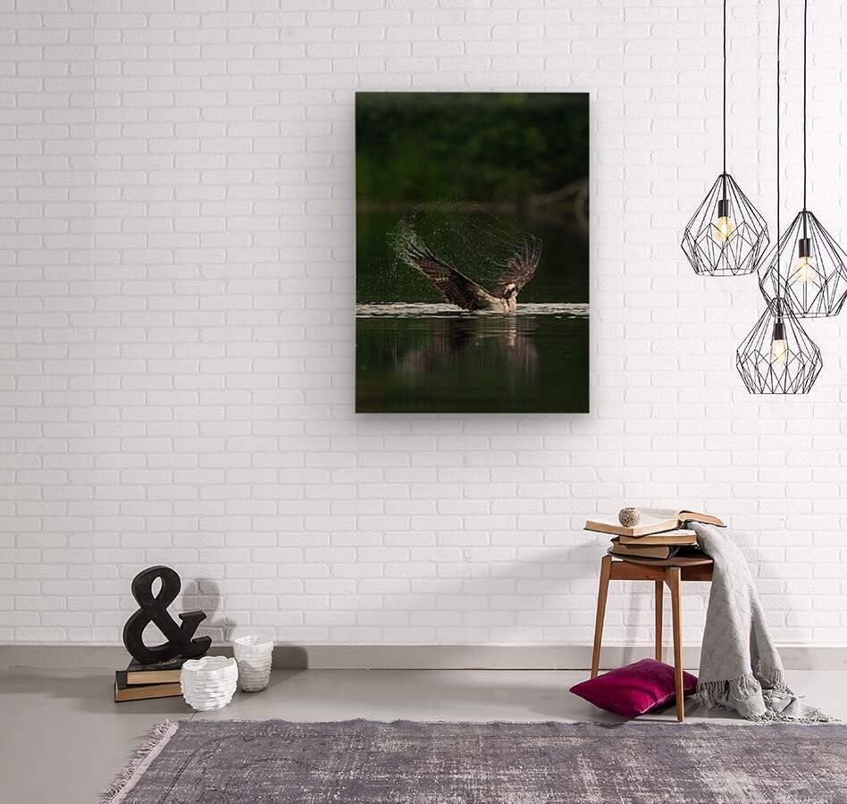 Wesley Allen Shaw 01134  Wood print