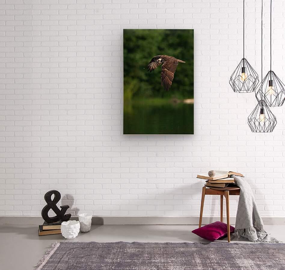 Wesley Allen Shaw 00460 1609734665.9256  Wood print