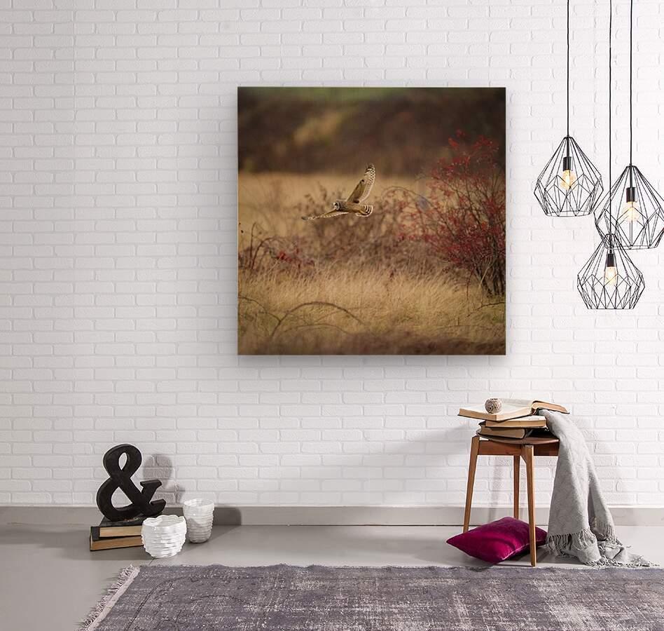 Wesley Allen Shaw 02085  Wood print