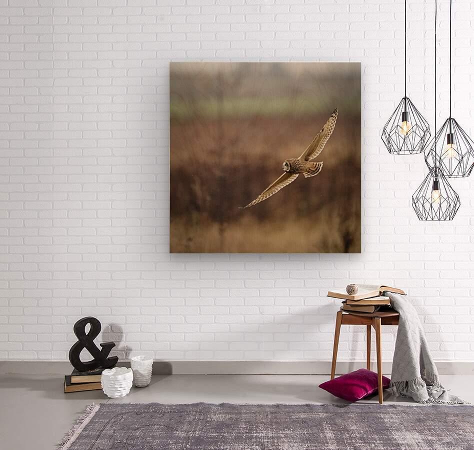 Wesley Allen Shaw 02128  Wood print