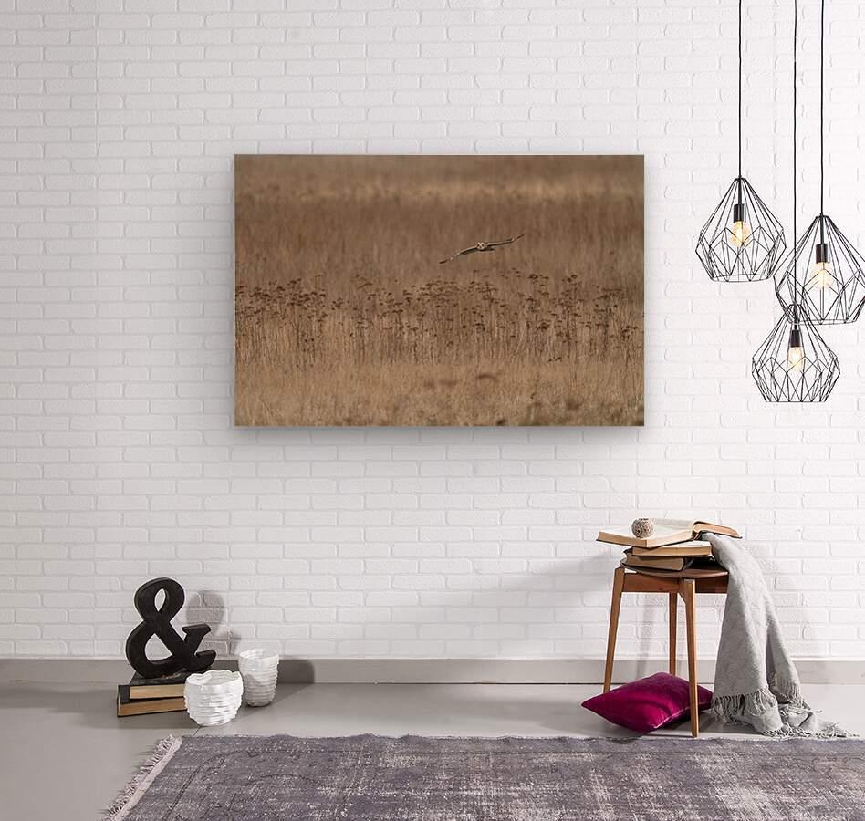 Wesley Allen Shaw 01435  Wood print