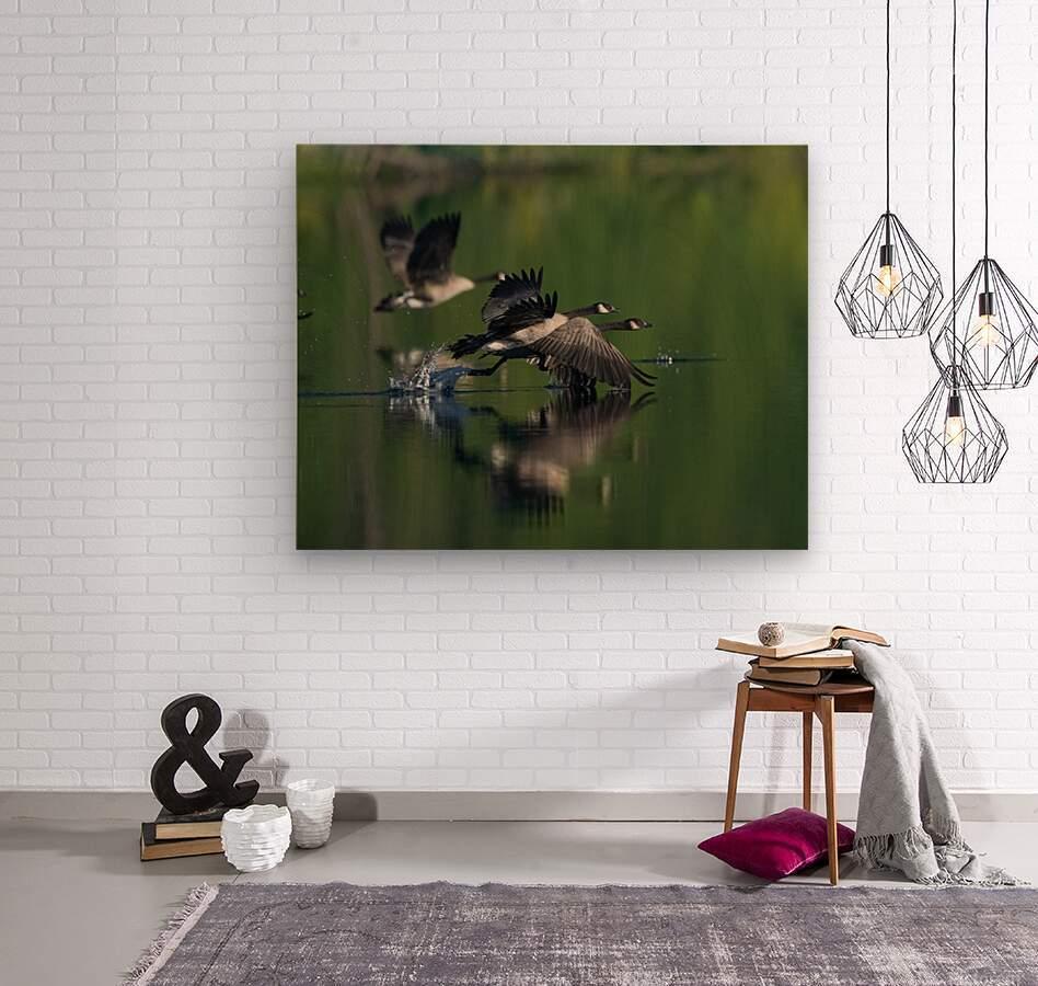 Wesley Allen Shaw 01788  Wood print