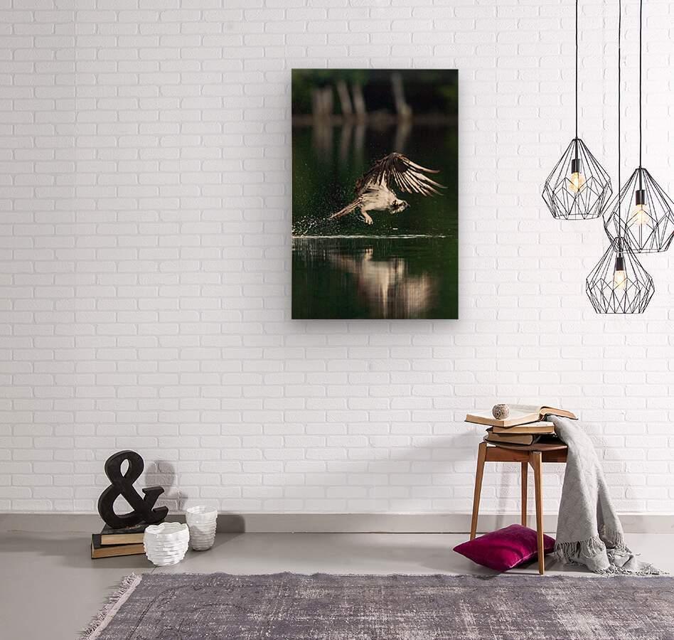 Wesley Allen Shaw 00898  Wood print