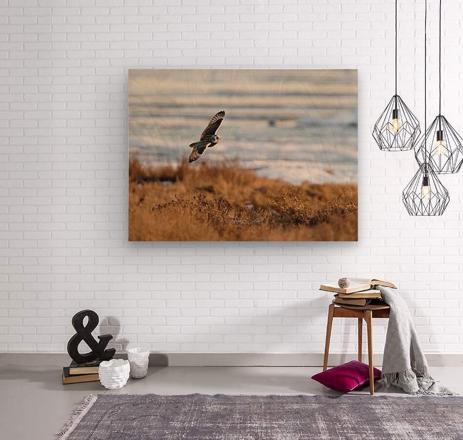 Wesley Allen Shaw 04091  Wood print