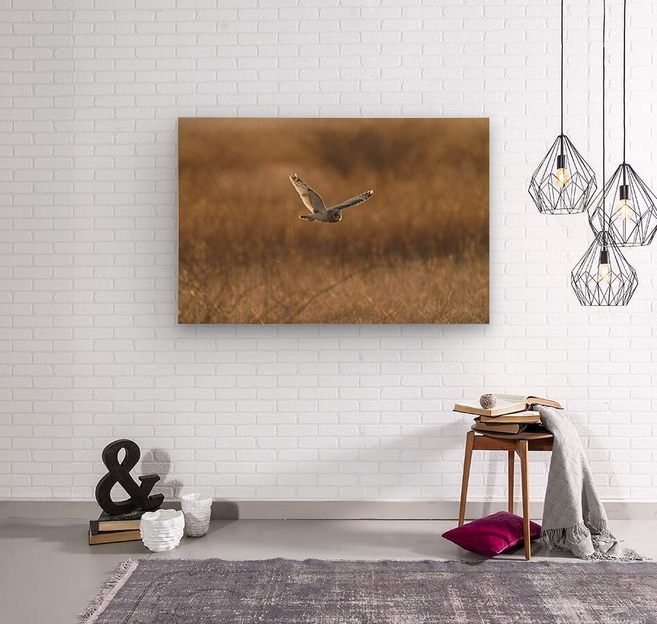 Wesley Allen Shaw 09047  Wood print