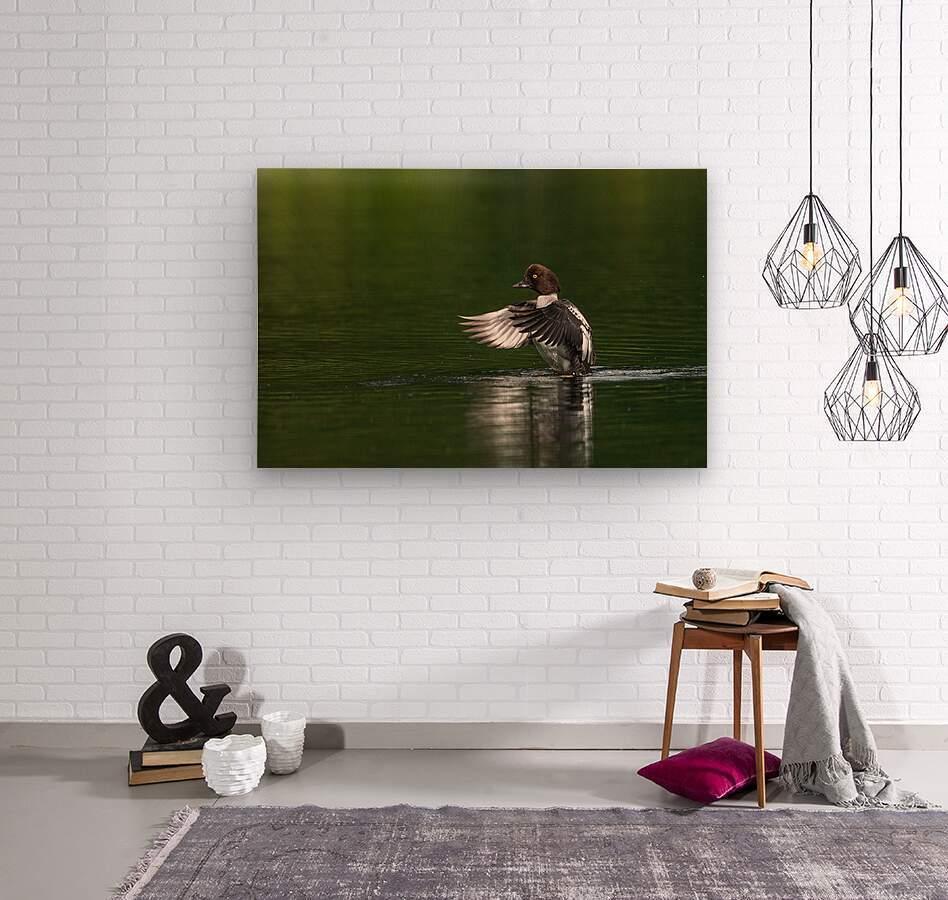 Wesley Allen Shaw 09988  Wood print