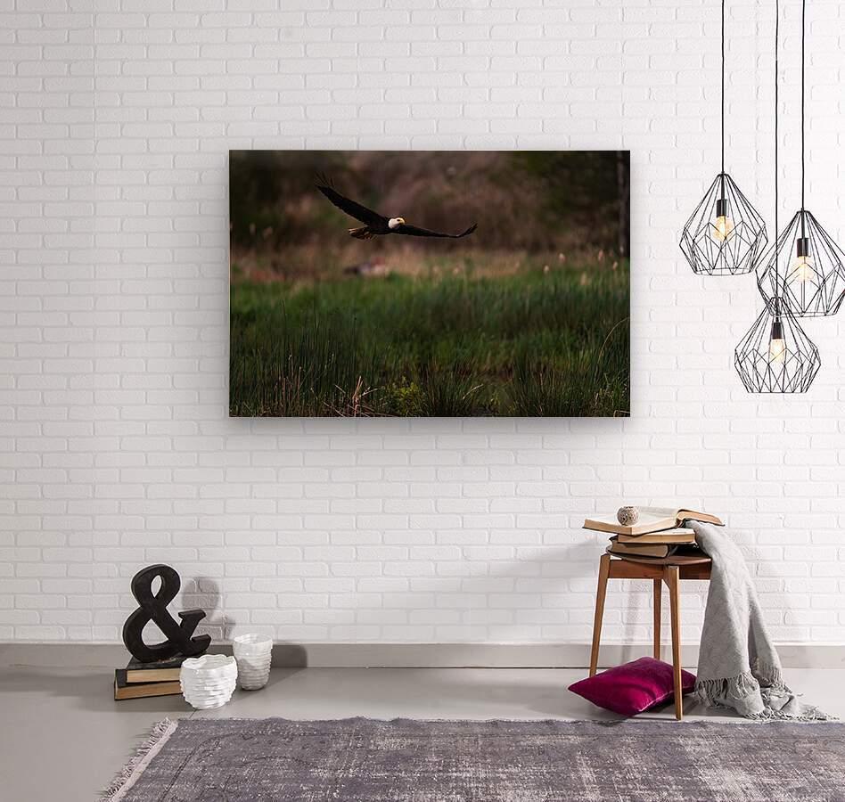 Wesley Allen Shaw 04576  Wood print