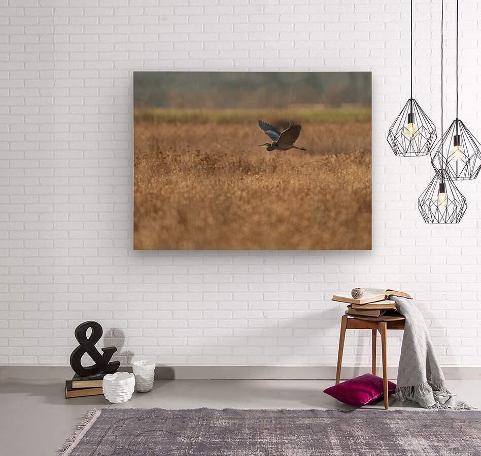Wesley Allen Shaw 03939  Wood print
